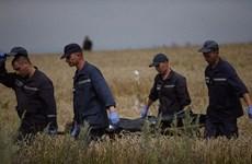 Bắt đầu chuyển 198 thi thể nạn nhân trên máy bay MH-17 về Donetsk
