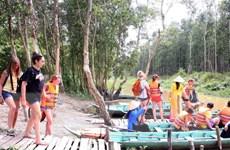Du lịch mùa nước nổi tại Đồng Tháp đã sẵn sàng đón du khách