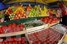 Các nước bị cấm xuất khẩu sang Nga phải tìm kiếm thị trường mới