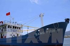 Quảng Nam thí điểm các mô hình đóng tàu bằng vật liệu mới