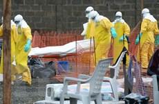 Ebola đe dọa tương lai của 8,5 triệu thanh thiếu niên Tây Phi