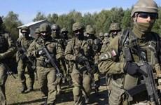 """NATO tiến hành cuộc tập trận """"Anaconda"""" tại miền Bắc Ba Lan"""