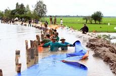 Đồng bằng sông Cửu Long chủ động phòng tránh thiệt hại do lũ