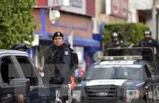 Cảnh sát Mexico phát hiện thêm 4 hố chôn tập thể tại Iguala