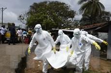 Dịch Ebola lan rộng do tập tục tang lễ của người dân châu Phi