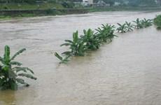 Quảng Ngãi: Một cô giáo bị thiệt mạng vì mưa lũ cuốn trôi