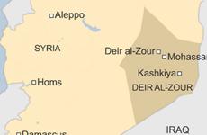 Syria phát hiện mộ chôn tập thể hơn 230 nạn nhân bị IS sát hại