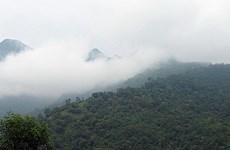 Điều chỉnh một phần Vườn quốc gia Ba Vì về tỉnh Hòa Bình quản lý