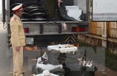Hà Tĩnh: Bắt giữ hơn 1,5 tấn chân trâu, bò bốc mùi hôi thối