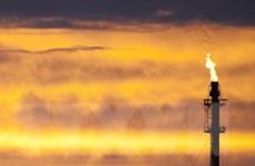 Giá dầu thế giới biến động ngược chiều sau báo cáo của DoE