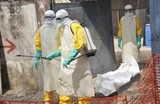 """WB viện trợ thêm 650 triệu USD hỗ trợ các nước """"ổ dịch"""" Ebola"""