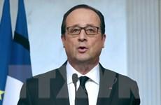 Tổng thống Pháp, Nga thảo luận về vấn đề Ukraine tại Armenia