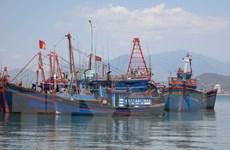 Tỉnh Trà Vinh hỗ trợ kinh phí mua bảo hiểm cho 60 chủ tàu cá