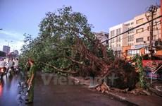 Cảnh báo dông lốc và gió giật mạnh ở khu vực thủ đô Hà Nội