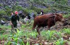 WTO ca ngợi thành tựu xóa đói giảm nghèo của Việt Nam