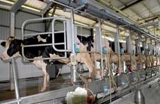 Israel hỗ trợ TP HCM phát triển nông nghiệp công nghệ cao
