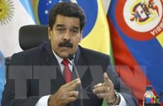 Báo Mỹ tố Venezuela xâm phạm Guyana, Palartino phản pháo