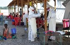 Châu Phi lo đối phó Ebola và nguy cơ cúm gia cầm bùng phát
