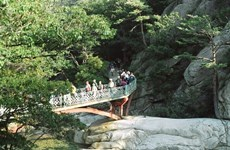 Các quan chức Hàn Quốc sang thăm Khu du lịch núi Kumgang
