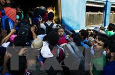 Số người nhập cư đông kỷ lục ồ ạt tràn vào cửa ngõ châu Âu