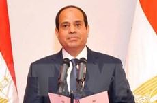 Ai Cập và ASEAN nhất trí thúc đẩy hợp tác trên nhiều lĩnh vực