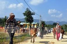 Quảng Nam đẩy mạnh hợp tác nhiều mặt với tỉnh Sekong của Lào