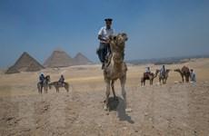 Ai Cập cam kết nhanh chóng điều tra vụ bắn nhầm du khách Mexico