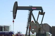 Nhu cầu tiêu thụ yếu, thị trường năng lượng tiếp tục ảm đạm