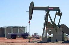 Giá dầu thô vẫn chủ yếu đi xuống trong các phiên của tuần qua