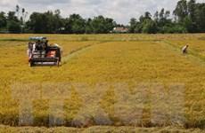 Hậu Giang xác định tập trung phát triển nông nghiệp toàn diện