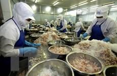 Bạc Liêu chi hàng nghìn tỷ đồng khai thác tiềm năng kinh tế biển