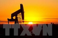 Giá dầu tiếp tục giảm trước những lo ngại về kinh tế Trung Quốc