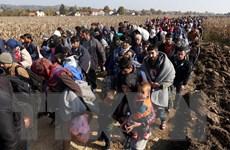 Châu Âu triển khai nhiều biện pháp ứng phó làn sóng nhập cư