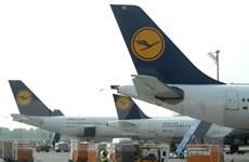 Nhiều chuyến bay tiếp tục bị hủy nếu Lufthansa không nhượng bộ