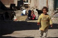 Việt Nam gây quỹ giúp đỡ phụ nữ và trẻ em nghèo tại Ai Cập