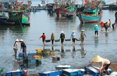 Cảng và dịch vụ hậu cần nghề cá Hải Phòng chưa đáp ứng nhu cầu