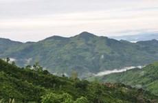 Núi Cà Đam - điểm du lịch nghỉ dưỡng hấp dẫn của Quảng Ngãi