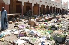 Cộng hòa Chad tiếp tục kéo dài tình trạng khẩn tại vùng Hồ Chad