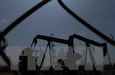 OPEC nỗ lực tìm kiếm thỏa thuận hạn chế nguồn cung dầu mỏ