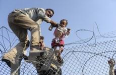 Brazil phá đường dây làm giả giấy tờ cho người nhập cư từ Syria