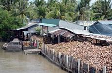 Sản phẩm từ dừa chiếm 30% tổng kim ngạch xuất khẩu của Bến Tre