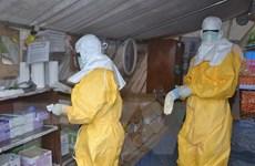 Guinea hết virus Ebola sau hơn 40 ngày không có ca nhiễm mới