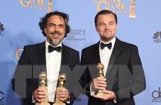 Leonardo DiCaprio đã tới rất gần bức tượng vàng Oscar 2016