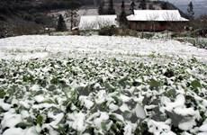 """Nhắn tin """"Áo ấm mùa Đông"""" giúp đỡ đồng bào vùng cao chống rét"""