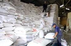 VFA không đề xuất thu mua tạm trữ gạo trong vụ Đông Xuân 2015-2016