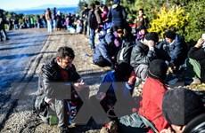 Cộng hòa Séc sẵn sàng tiếp nhận người tị nạn Syria từ Thổ Nhĩ Kỳ