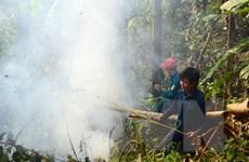 Báo động tình trạng cháy rừng trên cả nước trong mùa khô hạn
