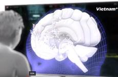 [Videographics] Ảnh hưởng của thời đại số lên bộ não con người