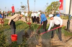TP. Hồ Chí Minh đầu tư gần 480 tỷ đồng trồng rừng và cây xanh