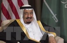 Ai Cập và Saudi Arabia lập quỹ đầu tư giải quyết tranh chấp hàng hải